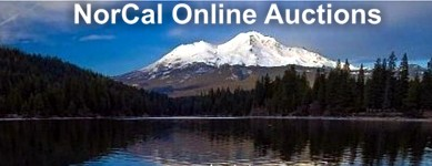 Logo for NorCal Online Estate Auctions & Estate Liquidation Sales
